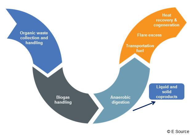 Figure 1: Anaerobic digestion process